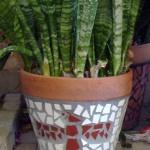 dan mueller mosaic garden art